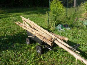 Salvaged Cedar Logs for garden beds