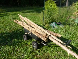 Salvaged Cedar Logs for garden beds