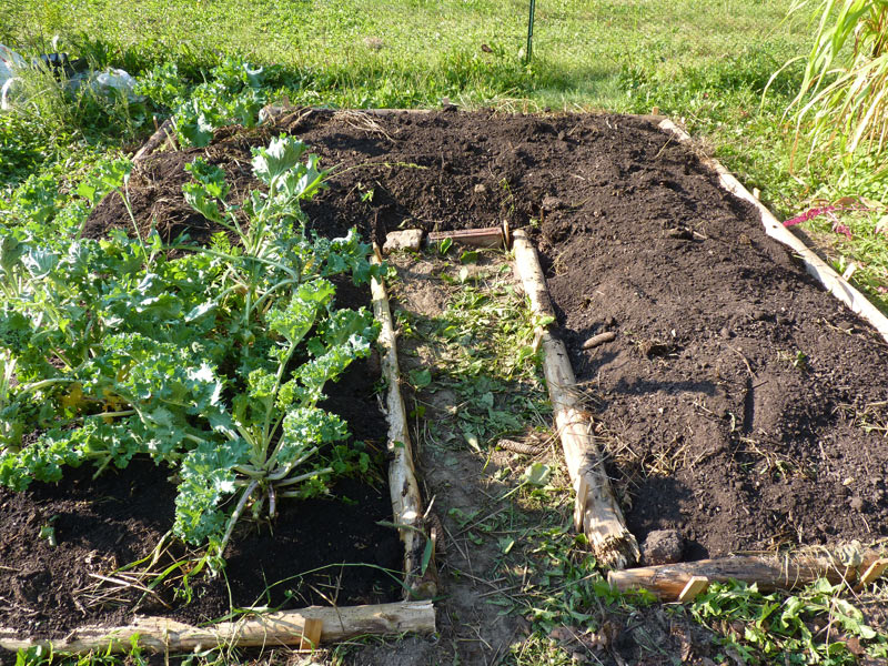 Raised Beds From Logs The Druid S Garden