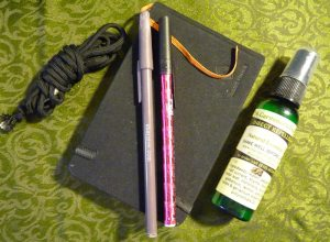 Journal, pens, paracord, and natural bug spray