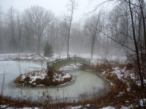 Sacred Pool at Imbolc