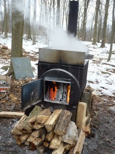 Boiling sap to make syrup!