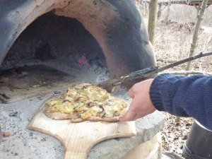 One of the reasons to grow mushrooms is so that you can make mushroom pizza, obviously.  This is being cooked in Strawbale Studio's outdoor oven--no electricity or fancy equipment required!