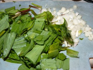 Ramps chopped up and ready for eating!