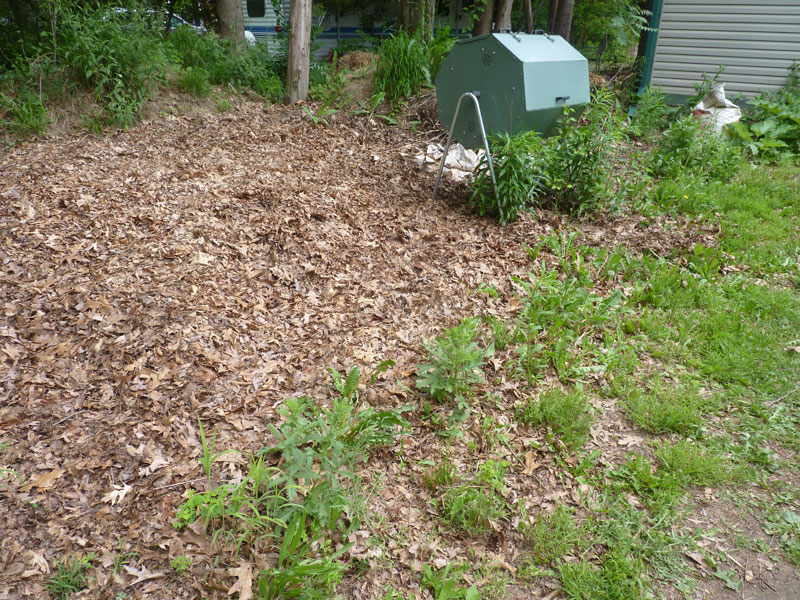 Backyard Mulch Pile :  with Tumblers, Sheet Mulching, Worms, Chickens, and Piles June 8, 2013