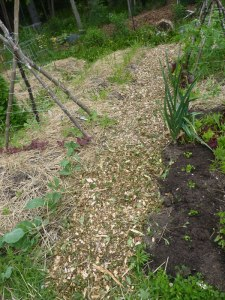 Working on new mulched pathways to keep out unwanted plants.