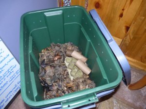 Vermicompost bin - yes, you can also add cardboard!