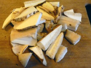 Cut up Dryad's Saddle