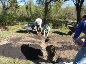 Adding mulch to the bed