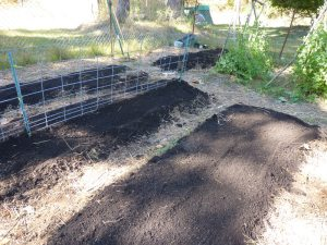 Garden before cover crops and mulch!