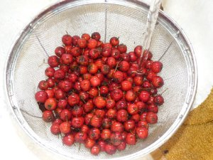 Haws being washed!