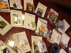 Sorting seeds in December!