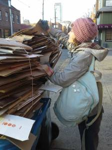 Briel foraging for cardboard in the city