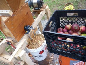 Grinding up Apples