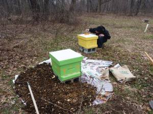 Hive setup