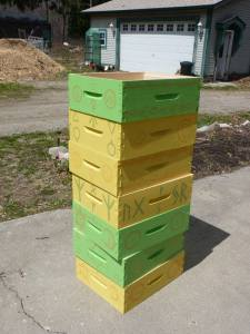 Here are our magical hives, ready for bees!