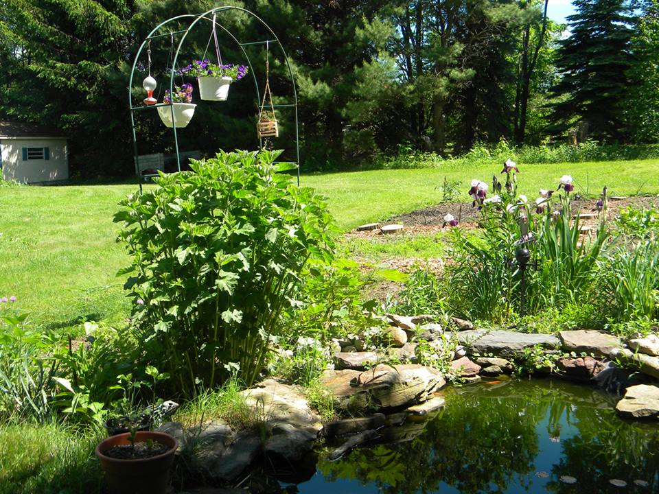 The druid s garden as a metaphor for living the druid 39 s - The well tended perennial garden ...