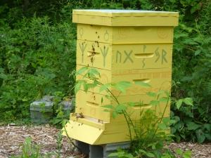 Happy hive!