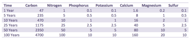 Nutrient Loss over Time