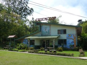 CASEM Co-op (Owned and operated by artists)