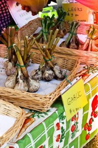 Locally grown garlic