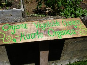 Organic Garden Sign at Sustainable Institute