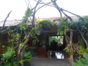 Unique Art Shop in Monteverde