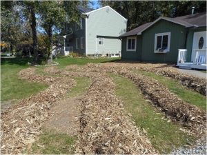 Mulched paths established....