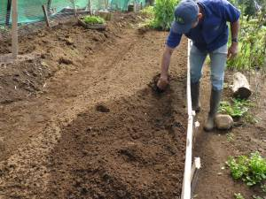 Double dug beds