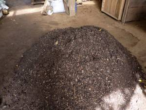 Beautiful pile of finished compost!