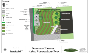Plans for the Farm - Overhead view