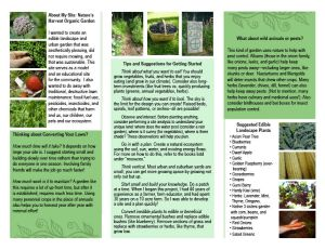 Brochure, page 2