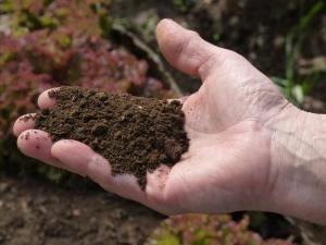 Sacred and nutrient rich soil