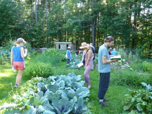 Interacting with nature, learning the plants