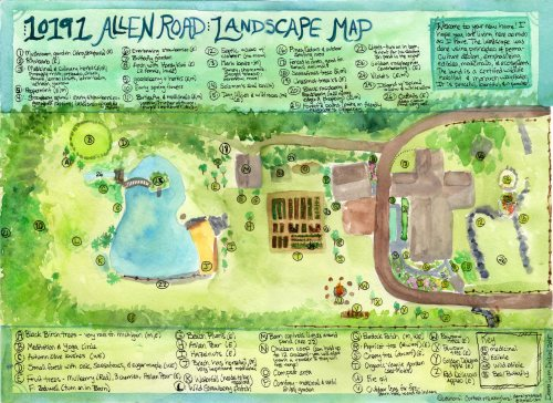 Full Landscape Map when I left (click to see larger version)