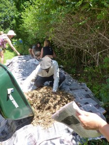 Adding wood chips as mulch