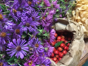 Hawthorn and New England Aster and Cauliflower Mushroom all harvested on the same day