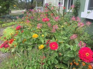 The flower garden...