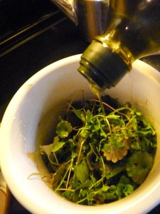 Pouring salve on herbs (these are a little too fresh, but I was in a hurry!)