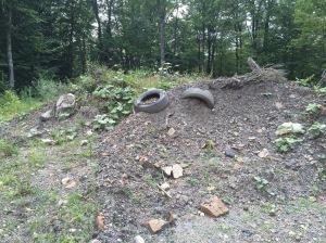 Boney dump runoff pile