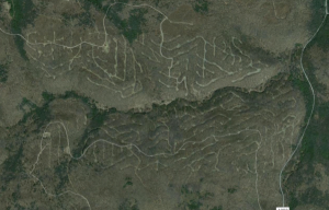 View from Google Maps of active oil exploitation in the Allegheny National Forest in North-Eastern PA