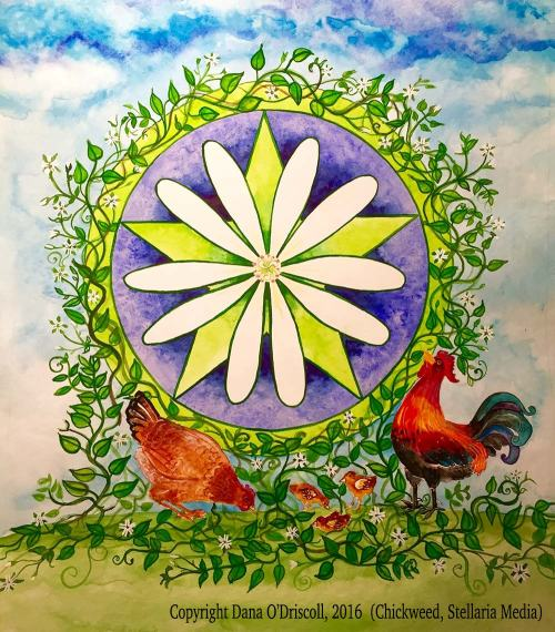 Chickweed (magical painting by yours truly)