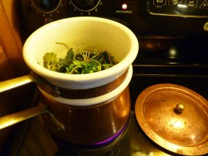 Double boiler with plant matter