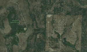 Screenshot of Alleghney National forest (from Google Maps)