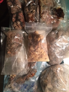Some of my many harvests of tree resin for incense making
