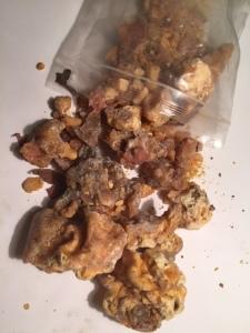 Jack Pine Resin - Abundant and Amazing smelling!