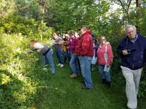 Learning and study together on plant walks!
