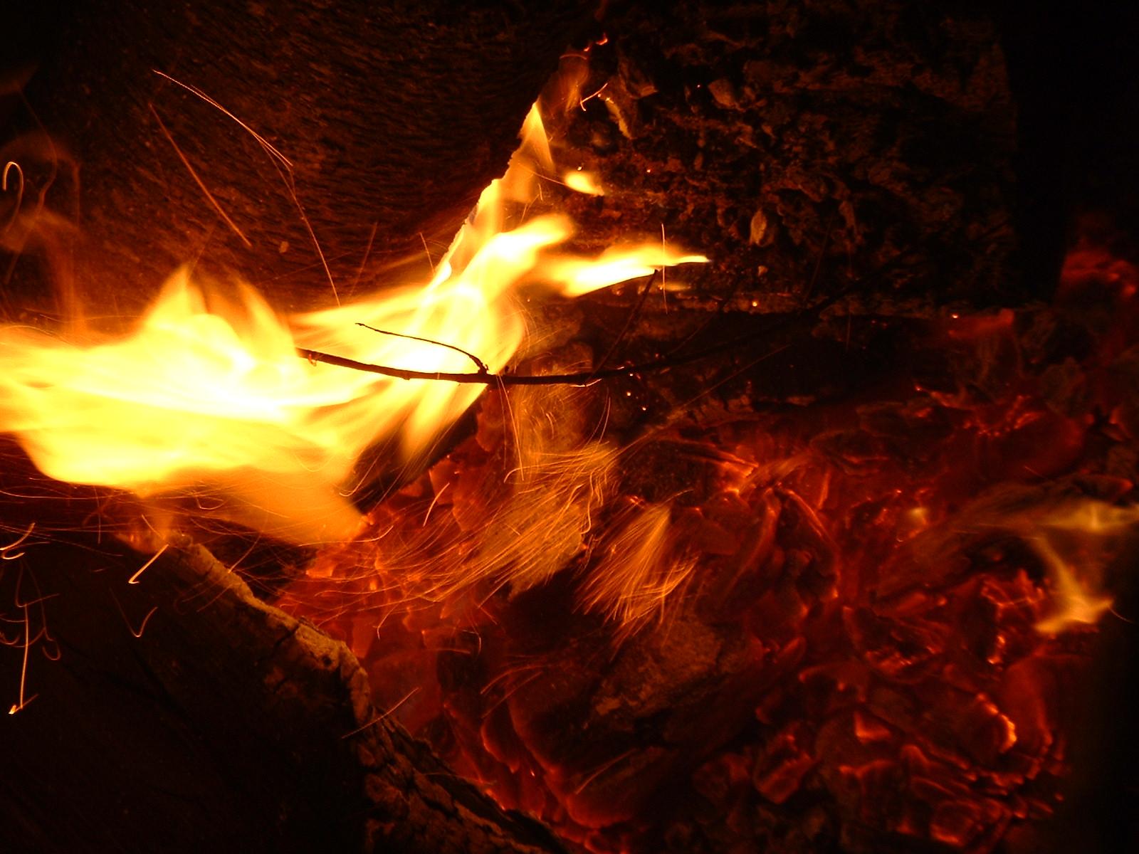fire the druid u0027s garden