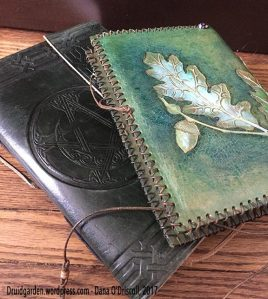 Some nice leather journals (both filled!)