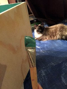 Cat inspection of painting process